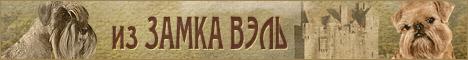 "Питомник  ""из Замка Вэль"" Шнауцер (миттельшнауцер) и Гриффон / щенки шнауцера и гриффона / Тула"